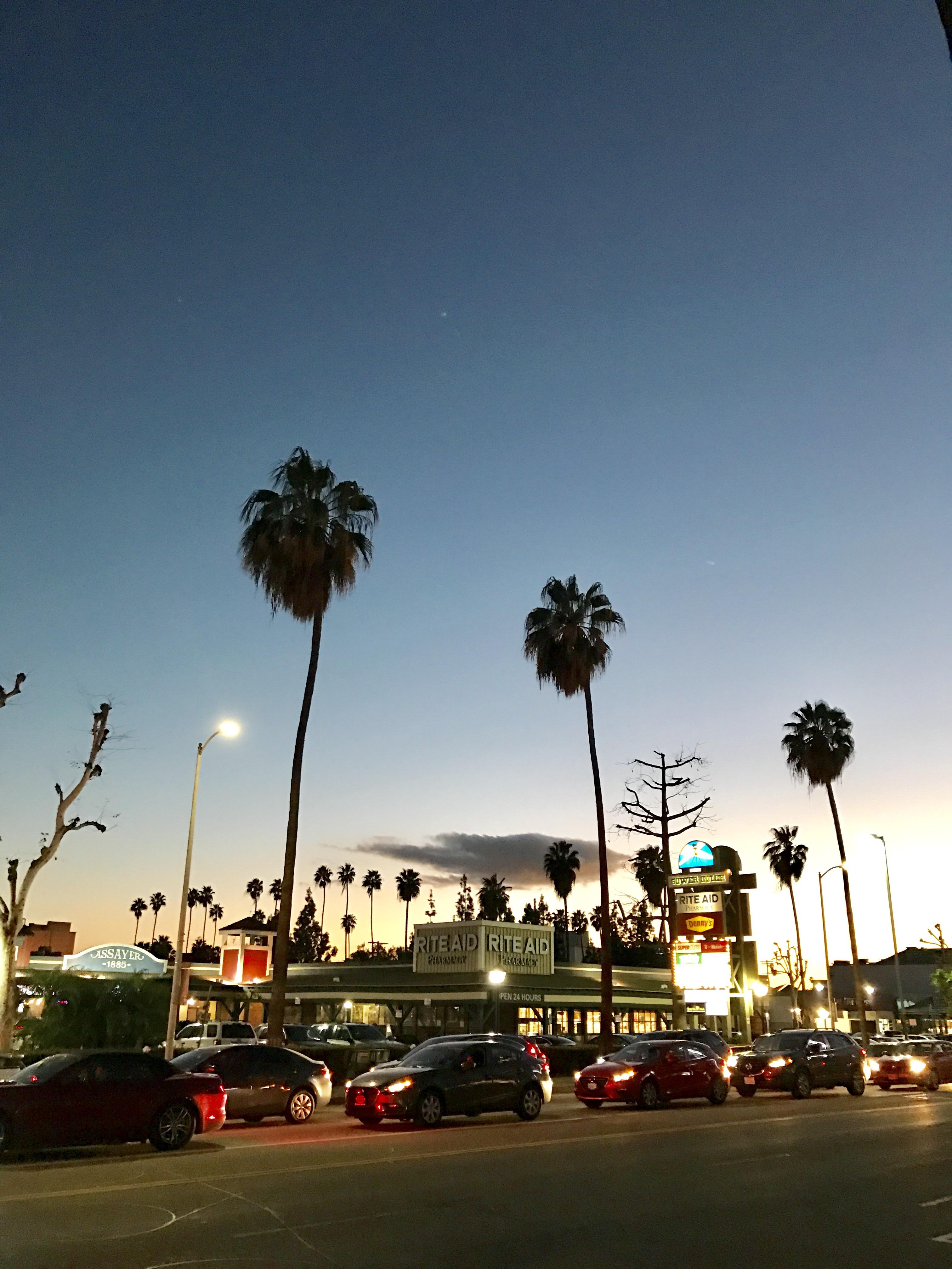 Camille et les garçons Los Angeles 1